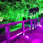 decorativa01-1-150x150 Iluminação Decorativa