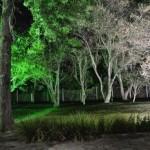 iluminacaodecorativa043-150x150 Iluminação Decorativa