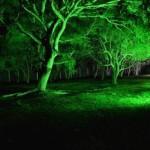 iluminacaodecorativa049-150x150 Iluminação Decorativa